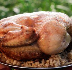 دجاج  محشي ومحمر