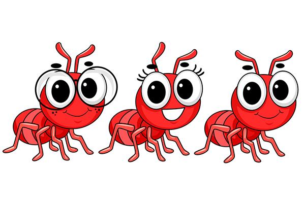 أفضل الطرق للتخلص من النمل