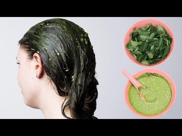 أوراق الكاري للتخلص من سقوط الشعر والقشرة وعلاج إلتهاب فروة الرأس