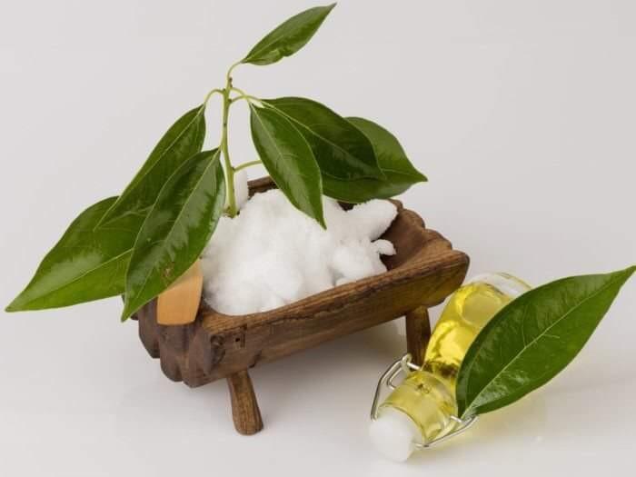 زيت الكافور.... أساسى فالشتاء لجمالك وشعرك وصحتك تعالى نعرف فوائده