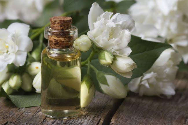 زيت الياسمين من أرق الزيوت العطرية التى تستخدم لجمالك .. أفضل الطرق لإستعماله